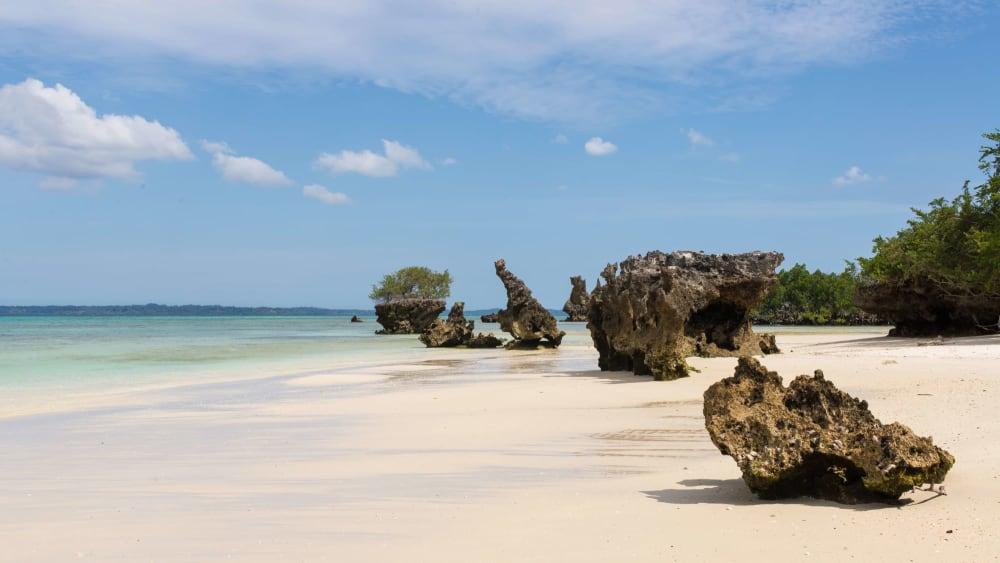 Pemba island zanzibar fuf5af