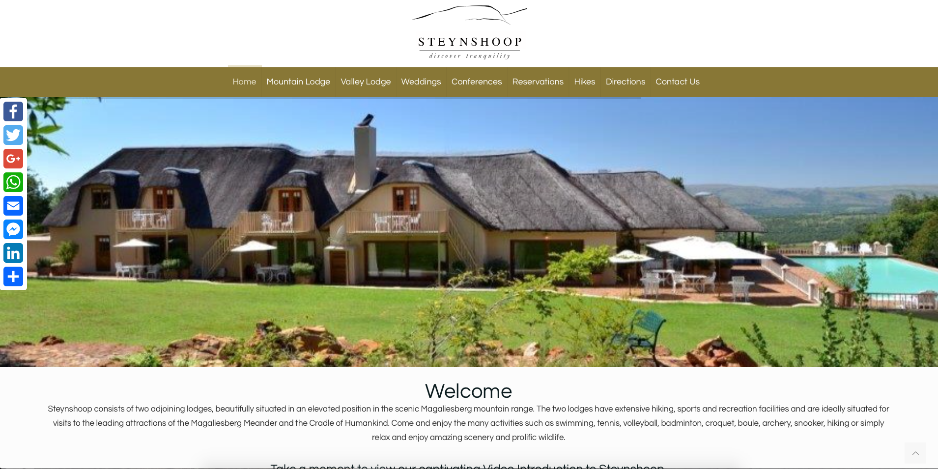 Steynshoop Website, Websites in Johannesburg