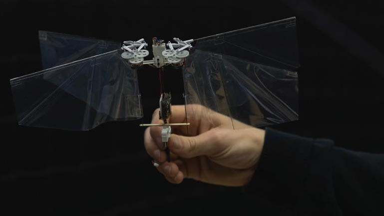 Flying Robot Mimics Rapid Insect Flight