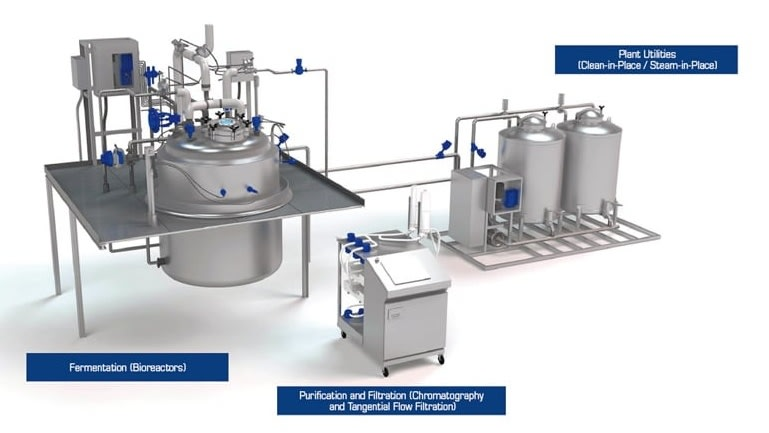Maximizing Biomanufacturing Productivity in Single-Use Applications