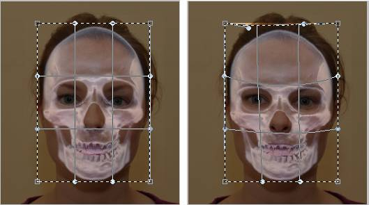 Edit Skull layer with the Warp tool