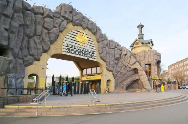 Московский зоопарк + Красная площадь
