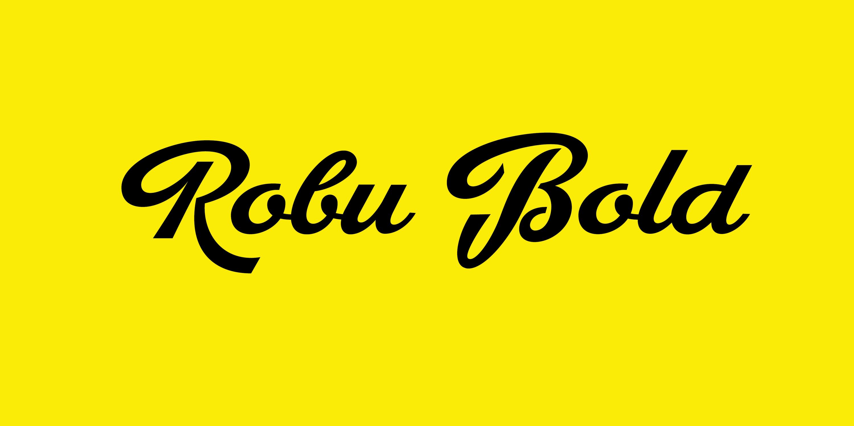 Robu Bold | The Designers Foundry