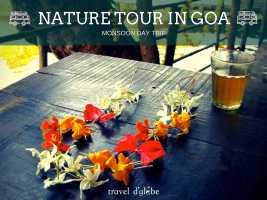 Nature Tour in Goa