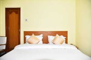 Standard Room in New Varuni Guest House