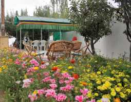Ashoka Guest House