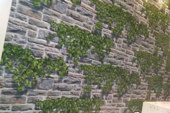 Walls Ekvin Decor