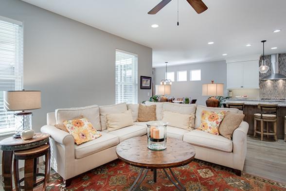 Living Room SLN Interiors