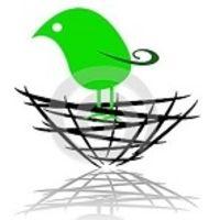 Bird Nest Interiors  - Interior designer