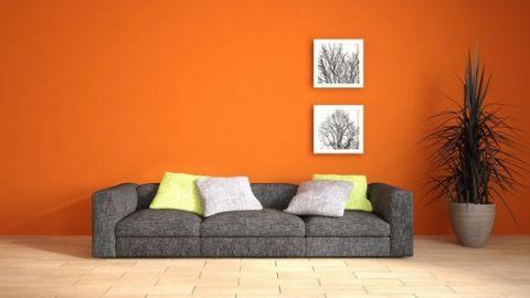 Astra Interiors  - Interior designer