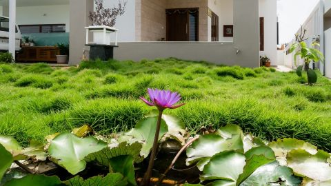 Jyaamiti architectural studio  - Architect