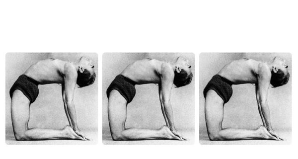 Backbending: A Yoga Essentials Workshop