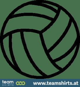 volleyball_ein2
