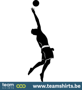 Volleyballspieler