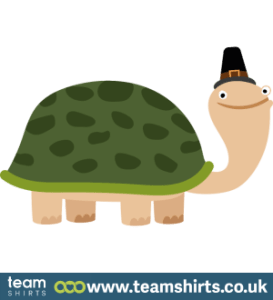 TURTLE WITH HAT