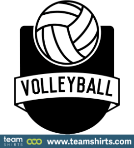 VOLLEYBALL LOGO