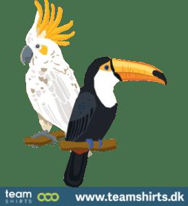Toucan & cacadoo