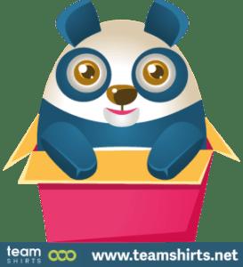 Panda sitzt in einer Schachtel