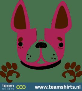 Hund und Pfoten