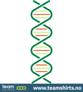 DNS-Spirale