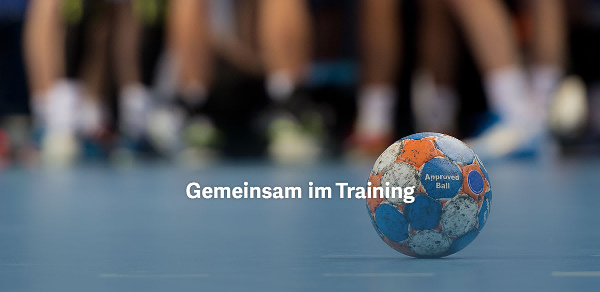 Handball Trikotsatz