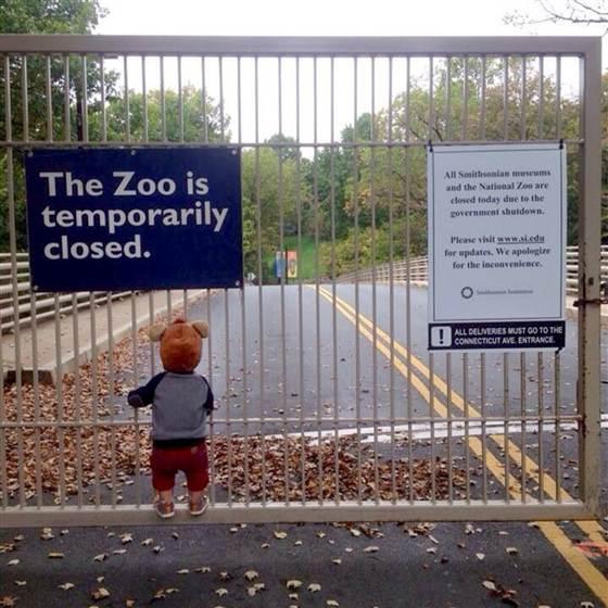 saddest-shutdown-photo