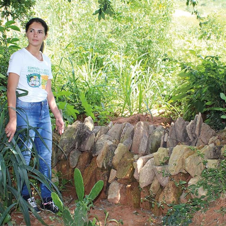 Maria has built stone banks to hold back rainwater and encourage it to soak into the soil, creating an area where she can grow many different types of trees and crops. Photo: Acervo Diaconia