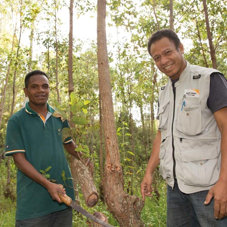 Aprendendo técnicas de regeneração florestal em Timor-Leste. Foto: Visão Mundial Austrália