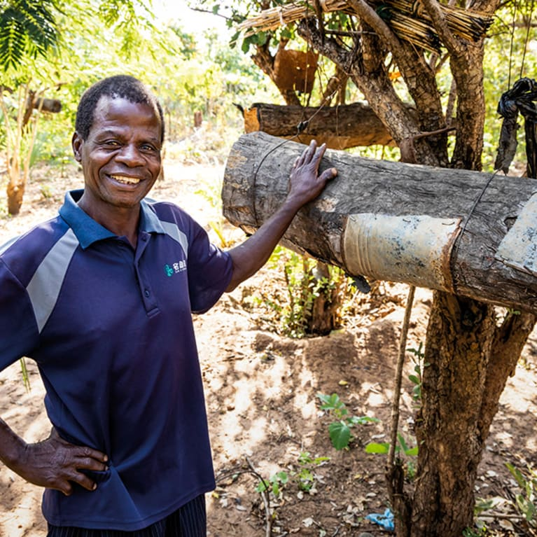Sainani Bikitala is proud of both his trees, and his bees.