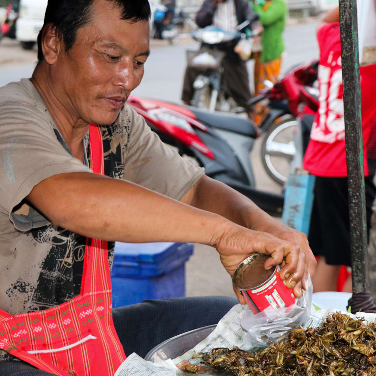 Selling edible insects on a market stall in Myanmar.