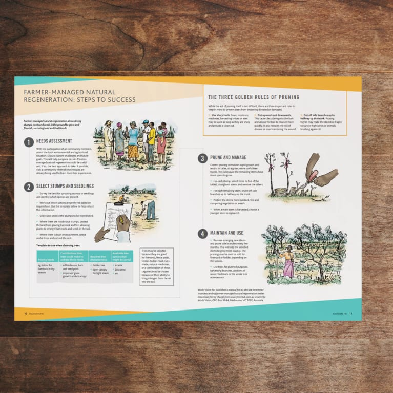 Farmer-managed natural regeneration: steps to success centre page photo