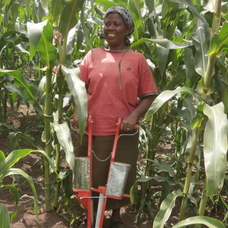 Woman with a jab planter that is used to sow maize crop