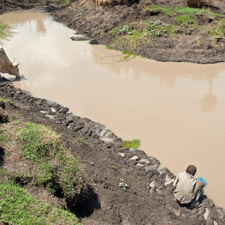 A boy fills a jerrycan from a muddy pond in Loka Abaya District, Ethiopia.  The pond is used to water livestock, but for some members of the community unable to walk the long distances to the nearest safe water source this pond is also used for drinking water. Photo: Will Boase Photography