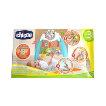 Chicco Baby Toy (Hyppo Gym)