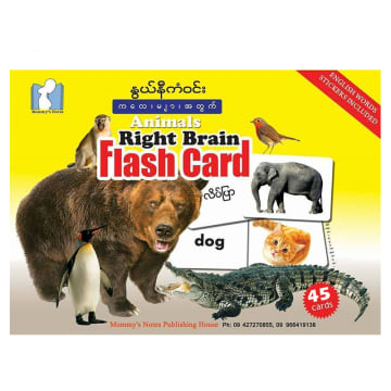 NNKW-Animals Flash Card