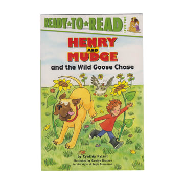 Ready to read H&M the wild goose chase