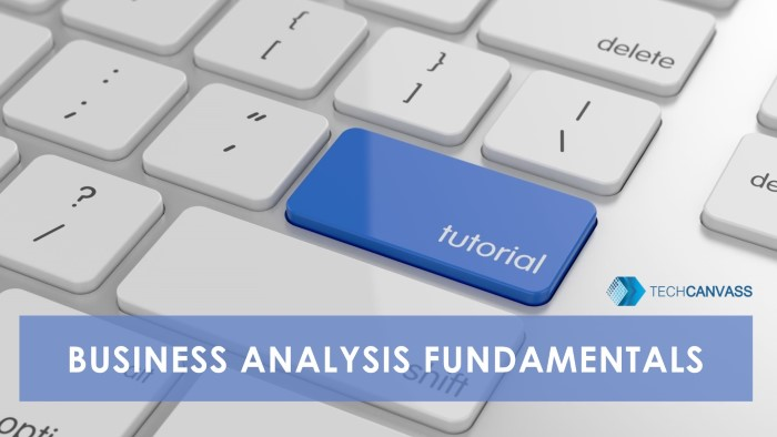 Business Analysis fundamentals tutorial TN