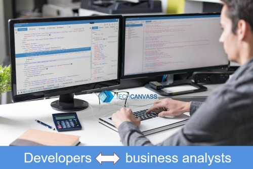 Why need business analysts