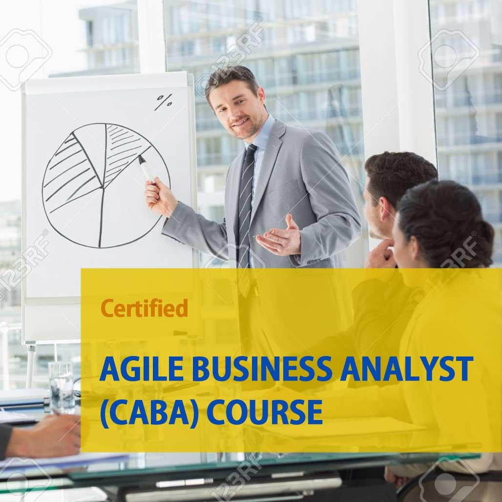 Business Analysis Virtual Workshop