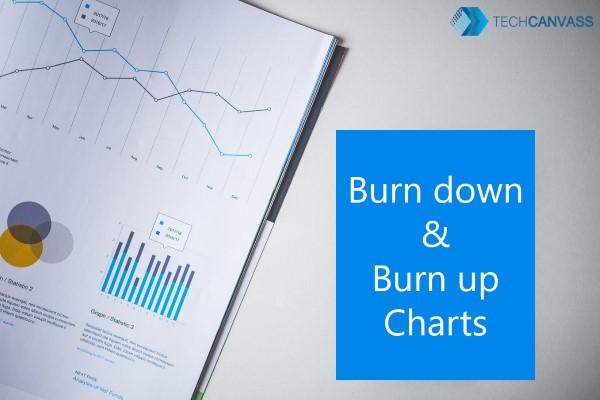 Burn down burn up chart