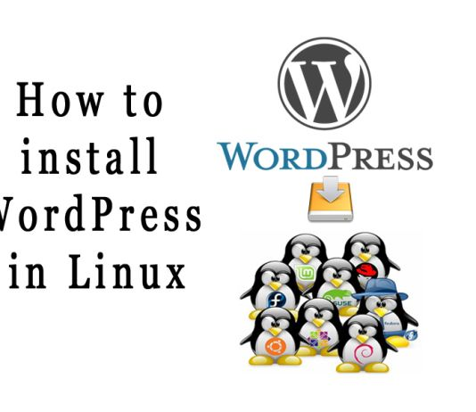 How to install WordPressin Linux Mint