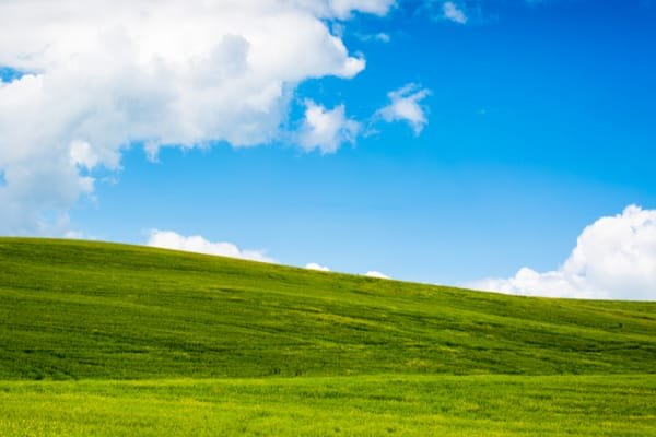 File Operations in Windows XP