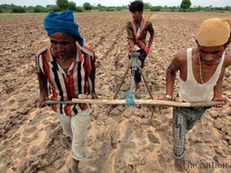 apps for Indian Farmers