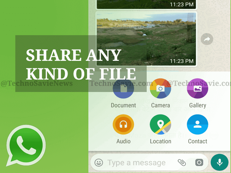 WhatsApp Update: Share any kind of Files and Documents