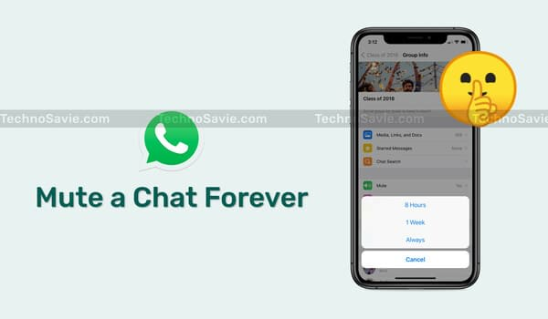 Mute a Chat Forever on WhatsApp