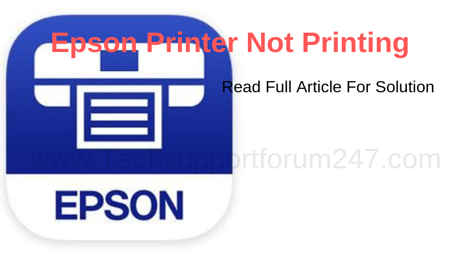 Epson Printer Not Printing Issue Fixed!