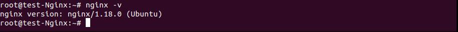 Install Nginx on Ubuntu 20.04 LTS - Ubuntu - TechvBlogs