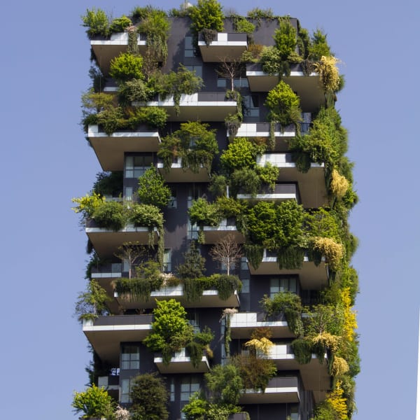 Houses and trees stacked together