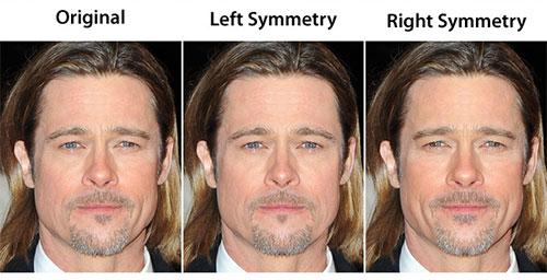 Brad Pitt's perfect face