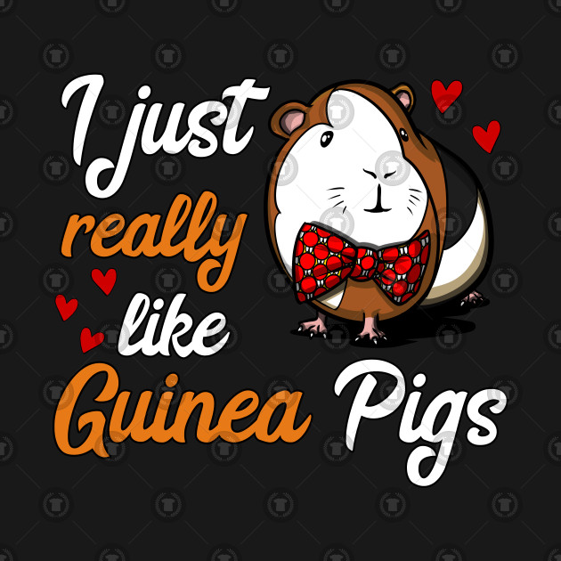 I Just Really Like Guinea Pigs Funny Pet